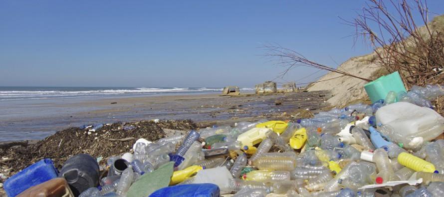 Warum uns Plastik krank macht