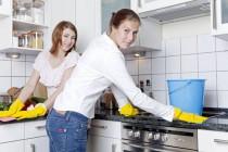 Haushaltsreiniger: Zu chemischen Mitteln gibt es ökologische Alternativen