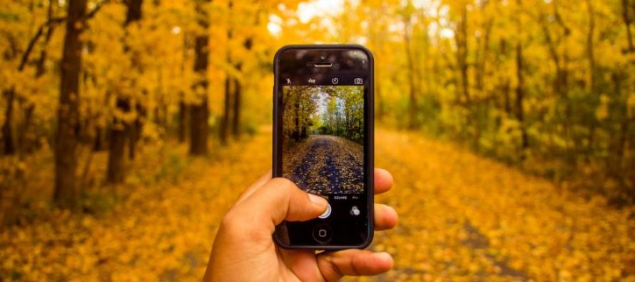 Digitale Fotografie: Das muss ein Fotodrucker können